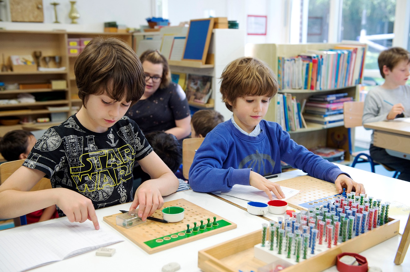 montessori primary schools ireland