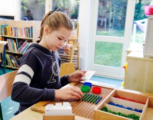 Montessori Primiary ages 9 -12